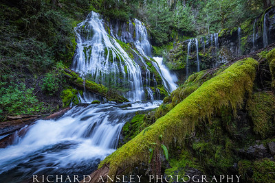 Northwest Waterfall 1