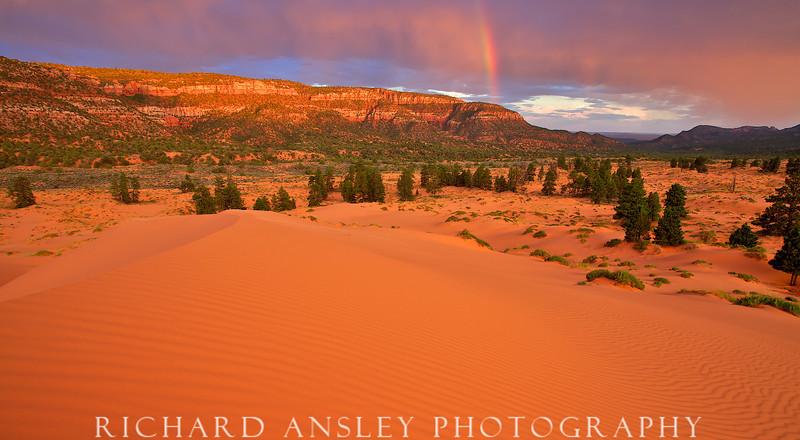 Coral Pink Rainbow-Coral Pink Sand Dunes, Utah