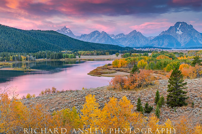 Pastel Sunrise at Oxbow-Grand Teton NP, WY