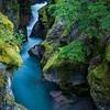Avalanche Creek-Glacier NP-Montana