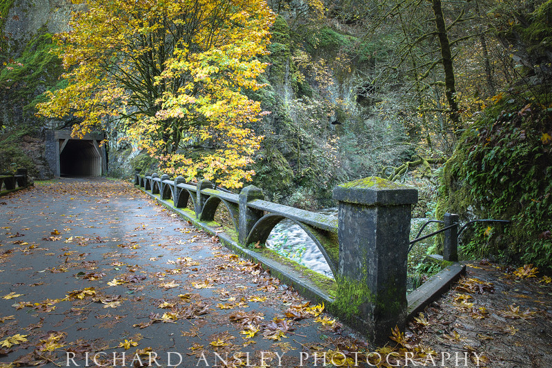 Oneonta Canyon Bridge, Oregon