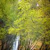 Desert Falls Approach-Calf Creek, Utah