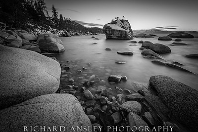 Bonsai Rock Monochrome-Lake Tahoe