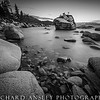 Bonsai Rock Monochrome
