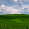 Field of Dreams-Palouse Washington