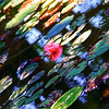 Abstract Water Lilies #3