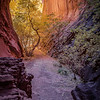 Golden Slot-Southern Utah (Limited Edition of 250)