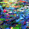 Abstract Water Lilies #2