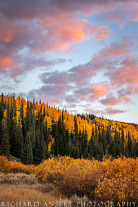 Mill Hollow Sunset-Uinta National Forest, Utah