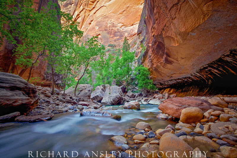 Soft Light-Virgin River, Zion NP Utah