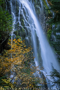 Autumn Falls-Three Sister's Wilderness, Oregon