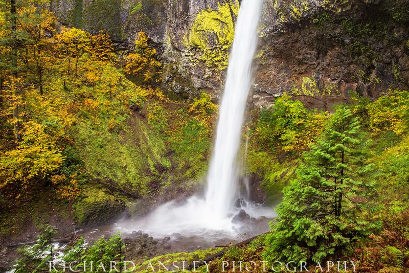 Elowah Falls 1, Oregon