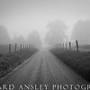 Lonesome Road B&W-Smoky Mountains, NC