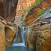 Orderville Falls-Virgin River Narrows, Zion NP, Utah