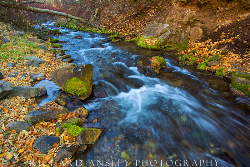 Mill Creek-Wasatch Mountains, Utah