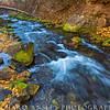Mill Creek-Wasatch Mountains, Utah