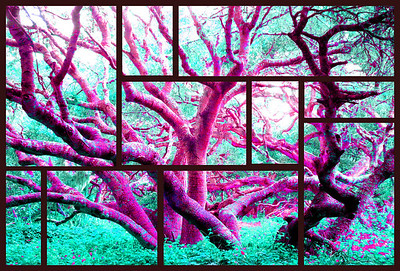 87 3758 Magenta Frost Windows
