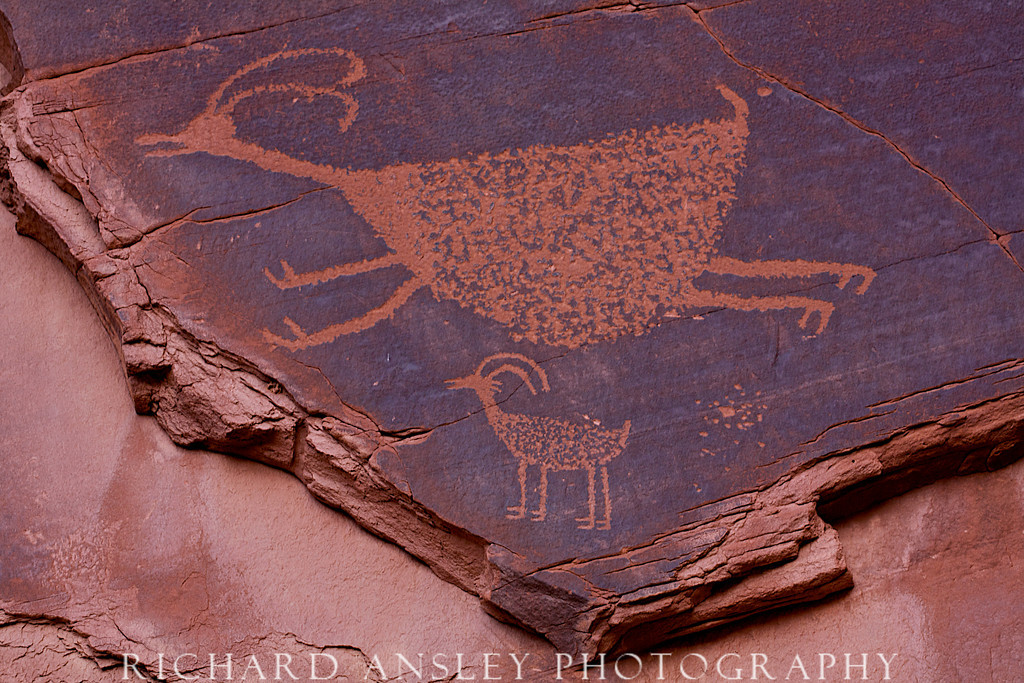 Dancing Antelope-Navajo Nations, Arizona