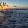 Driftwood Beach Sunrise,-Jekyll Island, SC
