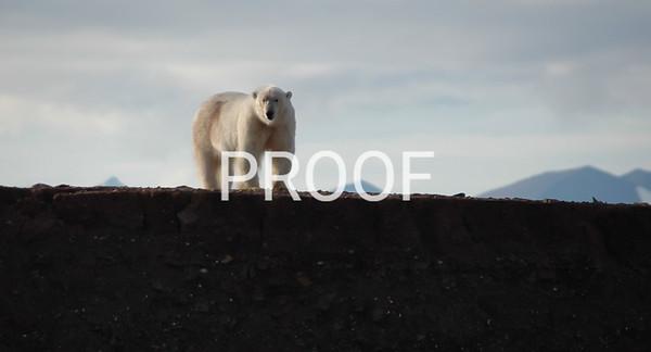 arctic 2005-3