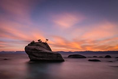 Bonsai Rock #1