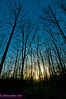 Sunset over deep and dark northern hardwood forest during springtime (USA WI White Lake)