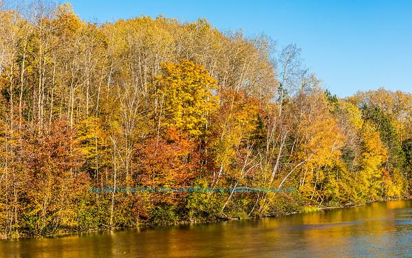 Creative Imagery by Robert Obst Nikon D810 Landscapes Inspirational Wolf River Refuge FAVS Image 3276