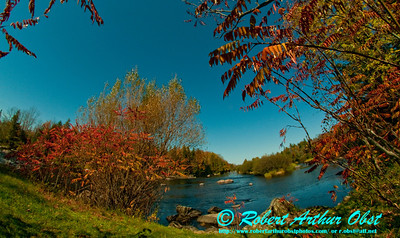 Under crystal clear blue skies autumn red sumacs frame the wild Wolf River at the Hollister put in for Section 2 (USA WI White Lake)