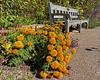 D283-2015  <br /> <br /> Gateway Garden at Matthaei Botanical Gardens, Ann Arbor, Michigan<br /> Taken October 10, 2015