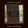 Hemlock #01 00<br /> <br /> Carolina Hemlock (Tsuga caroliniana)<br /> Family  Pinaceae  Distribution  Appalachian Mountains<br /> <br /> Laurel Grove, Nichols Arboretum<br /> April 2, 2012<br /> (nex-5)