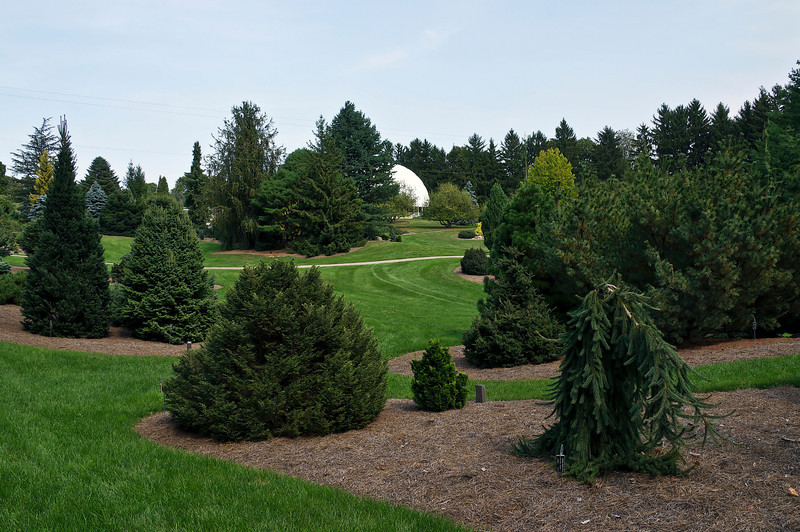 A portion of the south section of the Harper Collection of Dwarf and Rare Conifers, looking north toward the conservatories.<br /> .<br /> Hidden Lake Gardens, Lenawee County, Michigan.<br /> September 17, 2012.