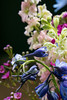 D096-201<br /> Detail of a bouquet of summer flowers<br /> <br /> Taken July 15, 2014