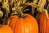 Pumpkin display at the market