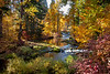 Autumn-TroutLake-creek-print_20181020_7077