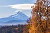 MountHood-2019-Autumn-WS-5547