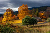 WSRiverValley-2017-Autumn-4162