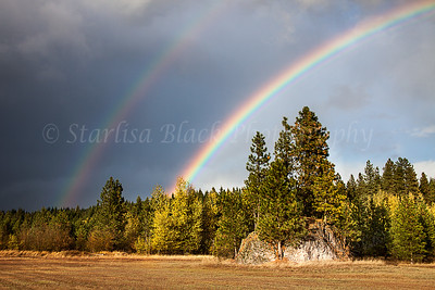 Meadowrock-Rainbow-WM_7250