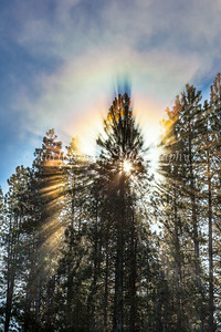 RainbowRays_Glenwood_6663-2