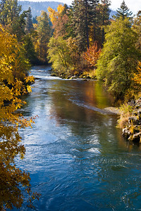 WhiteSalmonRiver_Autumn-6671
