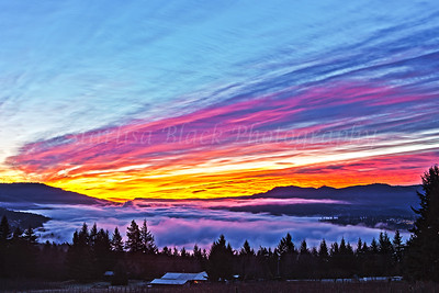 Over the Fog Sunrise from Underwood, Washington