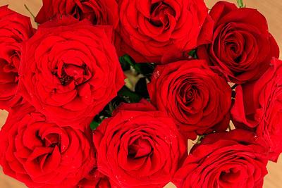 Dozen Red Roses From Above