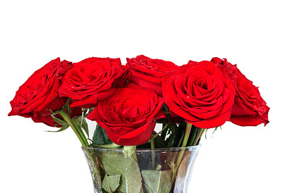 Dozen Red Roses In Vase