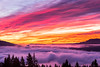 """""""Sunrise Glory above the Fog"""" is a mid December 2013 brilliant pink and orange image taken looking East over the Columbia River covered with a thick layer of fog.<br /> This image has been printed as a three panel split on Metal, and each panel is 16x24"""" in size, giving a combined wall size of 50x24"""". For the Months of February and March this will be on display at North Shore Cafe in White Salmon, Washington with many other of my images."""