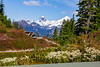 MountBaker-HeatherMeadows-4992