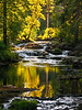 TroutCreek-summer-0835-2
