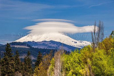 Turtle Lenny over Mount Adams