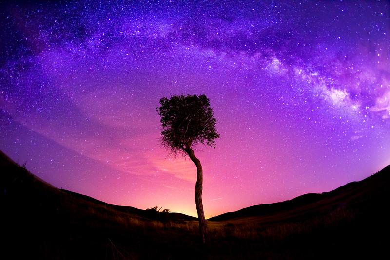 Lone Galaxy