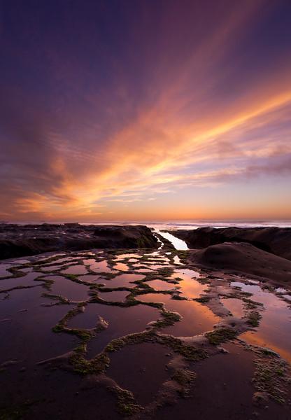 Serenity Reef