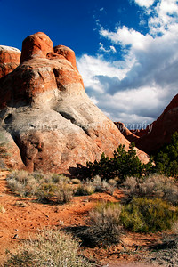 Arches National Park #8474