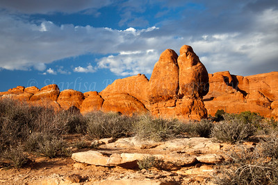 Arches National Park #8522